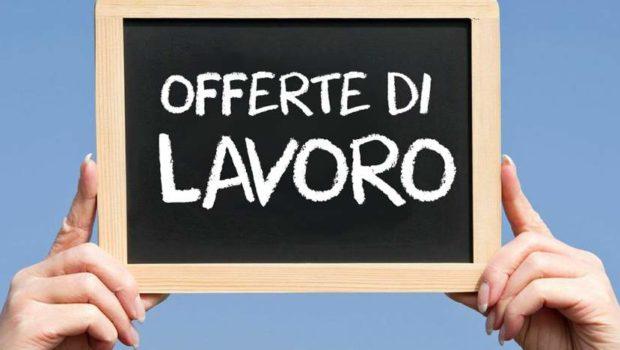 Adecco e il Cirque du Soleil, 300 opportunità di lavoro a Roma