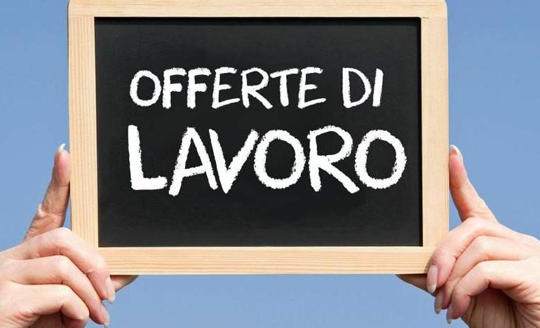 Roma, Vueling cerca nuovi assistenti di volo: l'open day si terrà il 18 ottobre