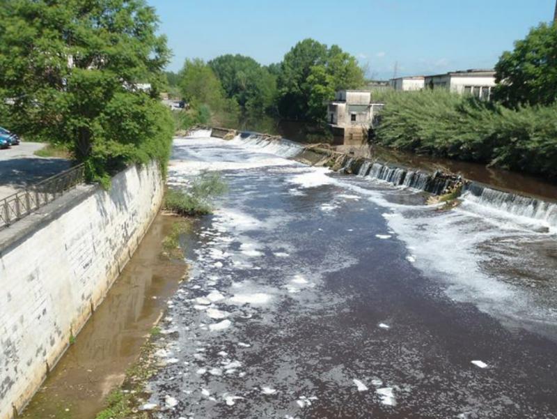 Morìa di pesci nel fiume Sacco: presto i risultati dopo i campionamenti di Arpa Lazio
