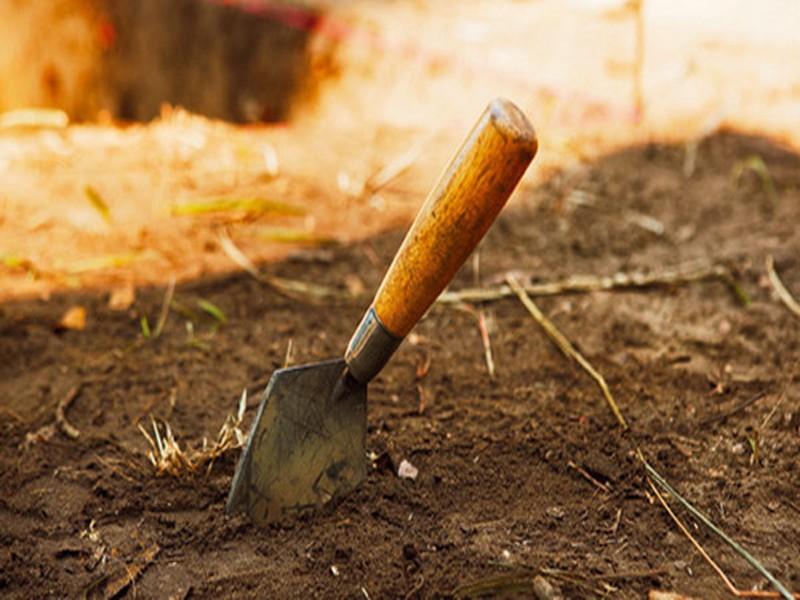 Castelli Romani, scavi aperti a Tuscolo: 16 luglio ingresso gratuito