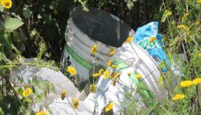 fiumicino abbandono rifiuti