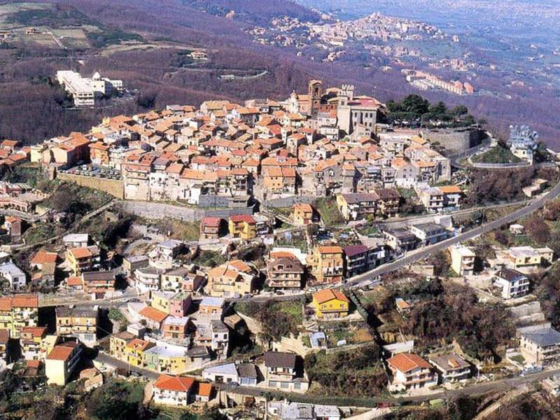 """Rocca Priora, Equi Diritti: """"Diffidate dai millantatori"""""""