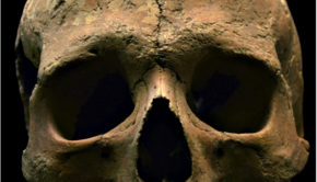 museo delle civiltà malaria impero romano