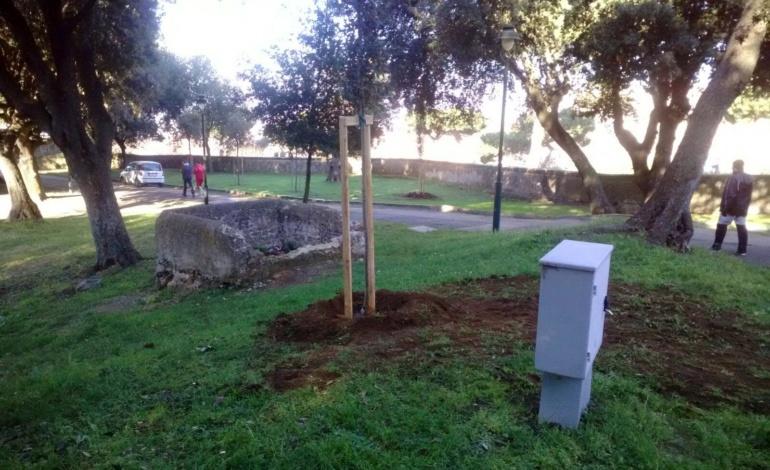 Frascati, nuovi alberi: si arricchisce il patrimonio arboreo della Città (FOTO)