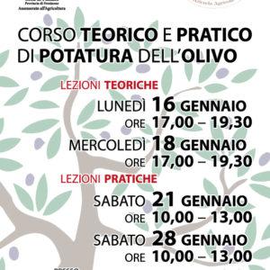Paliano, corso di potatura dell'olivo: al via la seconda edizione gratuita