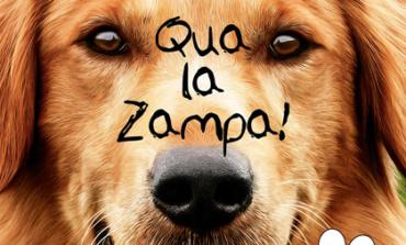 "Veroli, al cinema Cine Sala Trulli arriva il film ""Qua la zampa!"""