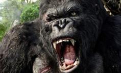Recensione Kong: Skull Island