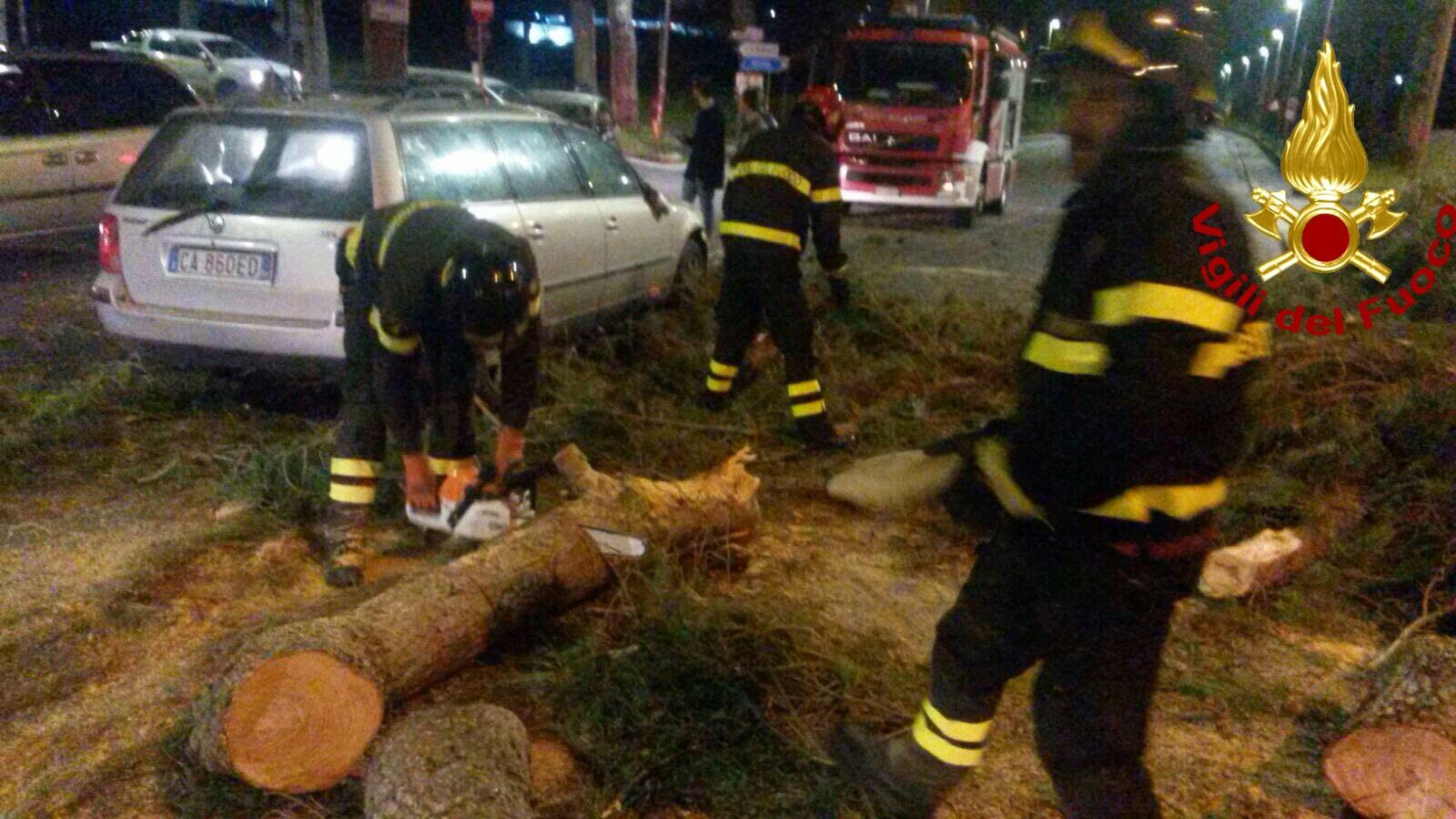Casilina, albero cade su auto a Castrocielo: morti due ragazzi di Arce