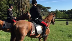 denuncia cavallo