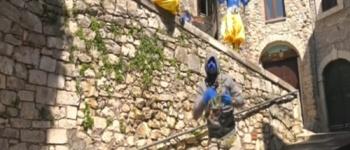Bovini in libertà a Carpineto Romano: il video andato in onda a Striscia la notizia