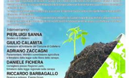 Colleferro, Fitodepurazione e Green Economy. Opportunità di sviluppo per il territorio