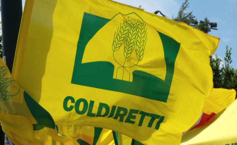 """Pomezia, Fucci incontra Coldiretti: """"Insieme per lo sviluppo del settore agricolo"""""""