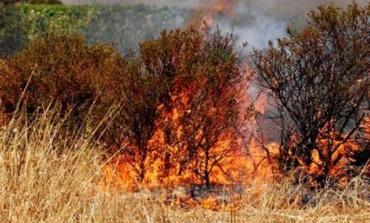Continua l'emergenza incendi in Ciociaria: anche la Polizia aiuta a spegnere i focolai