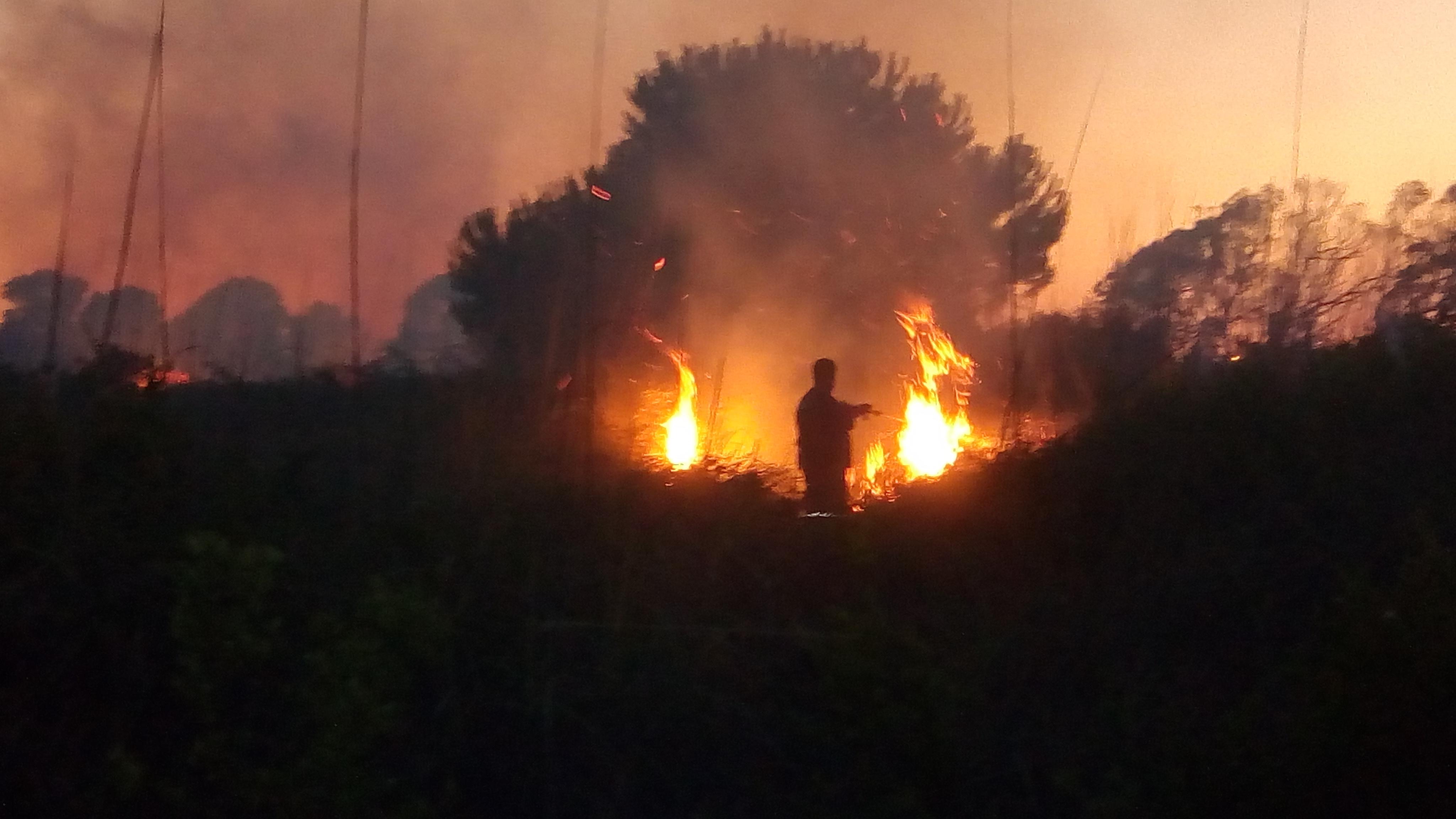 Roma-Fiumicino, incendio in complanare: lunghe code e traffico in tilt sull'immissione dalla A91 al GRA