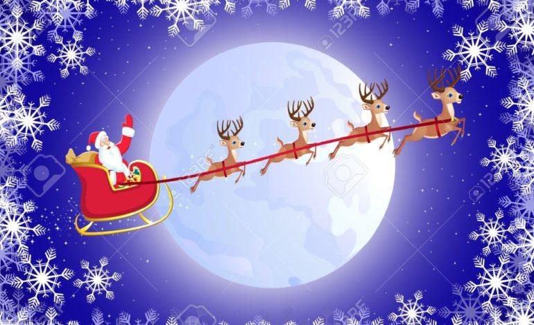 Lo zoomarine di Torvaianica sfida il caldo con un evento speciale: Natale a Ferragosto