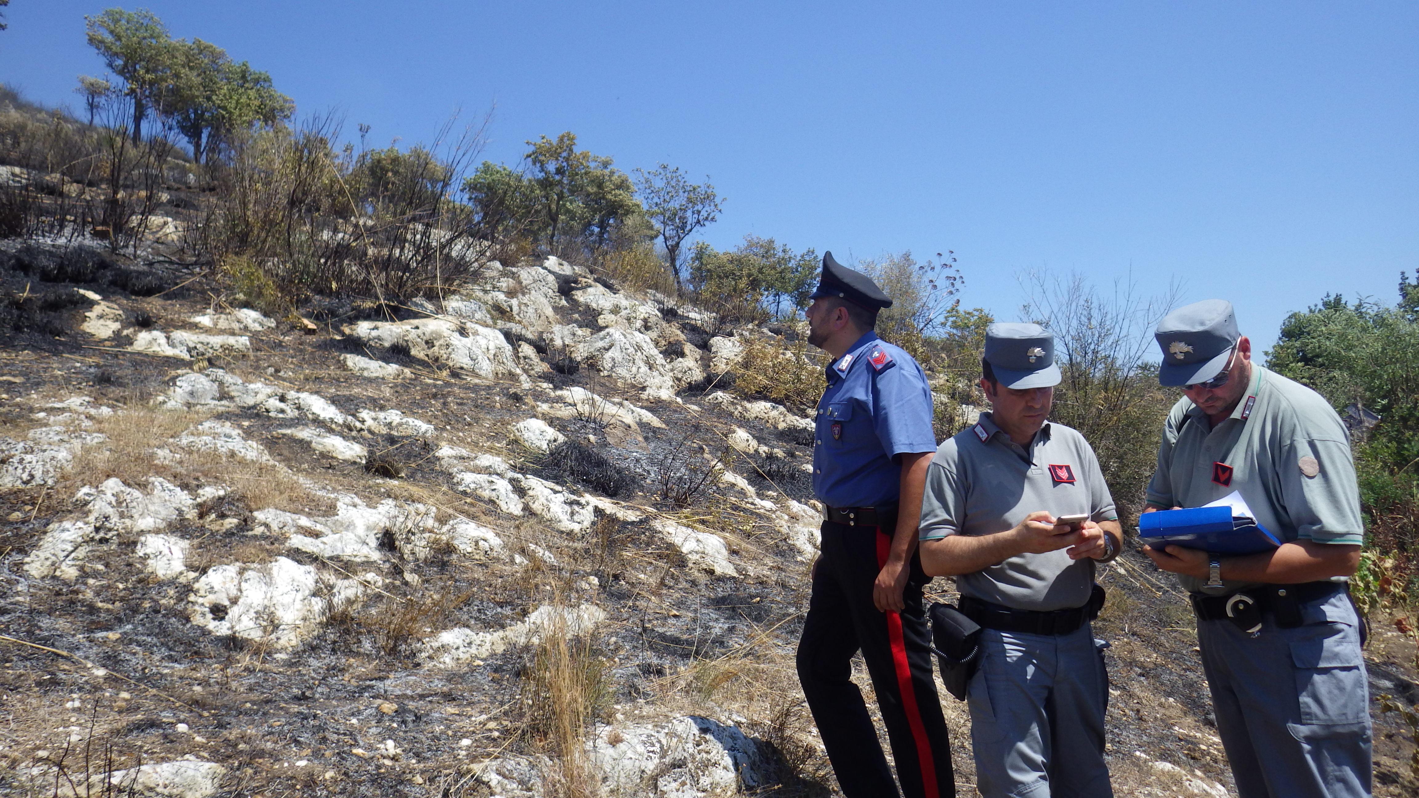 Castel Fusano, arrestato piromane: colto in flagrante mentre appiccava incendio