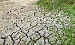 Riscaldamento globale, l'aumento delle temperature potrebbe uccidere 152.000 europei all'anno entro la fine del secolo