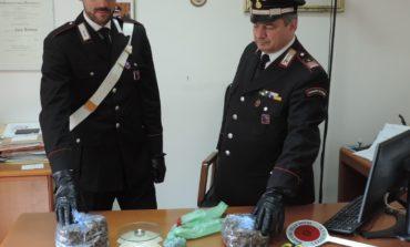 Fiumicino, trovato con 700 grammi di marijuana in casa: arrestato dai Carabinieri