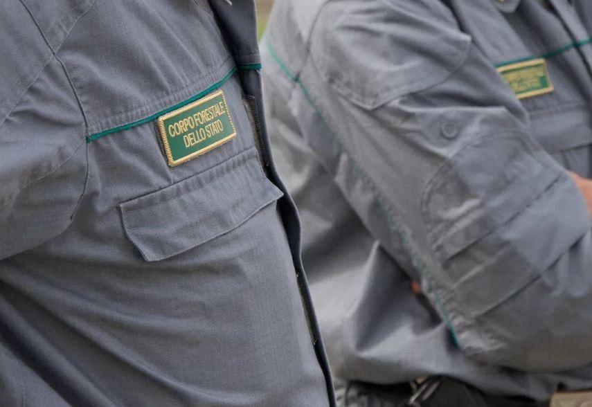 Arce, Guardie Forestali ambientali Valle del Liri: al via le domande di iscrizione