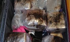 Velletri, arrestato dalla Polizia un 26enne: nascondeva in una valigia 12 kg di hashish