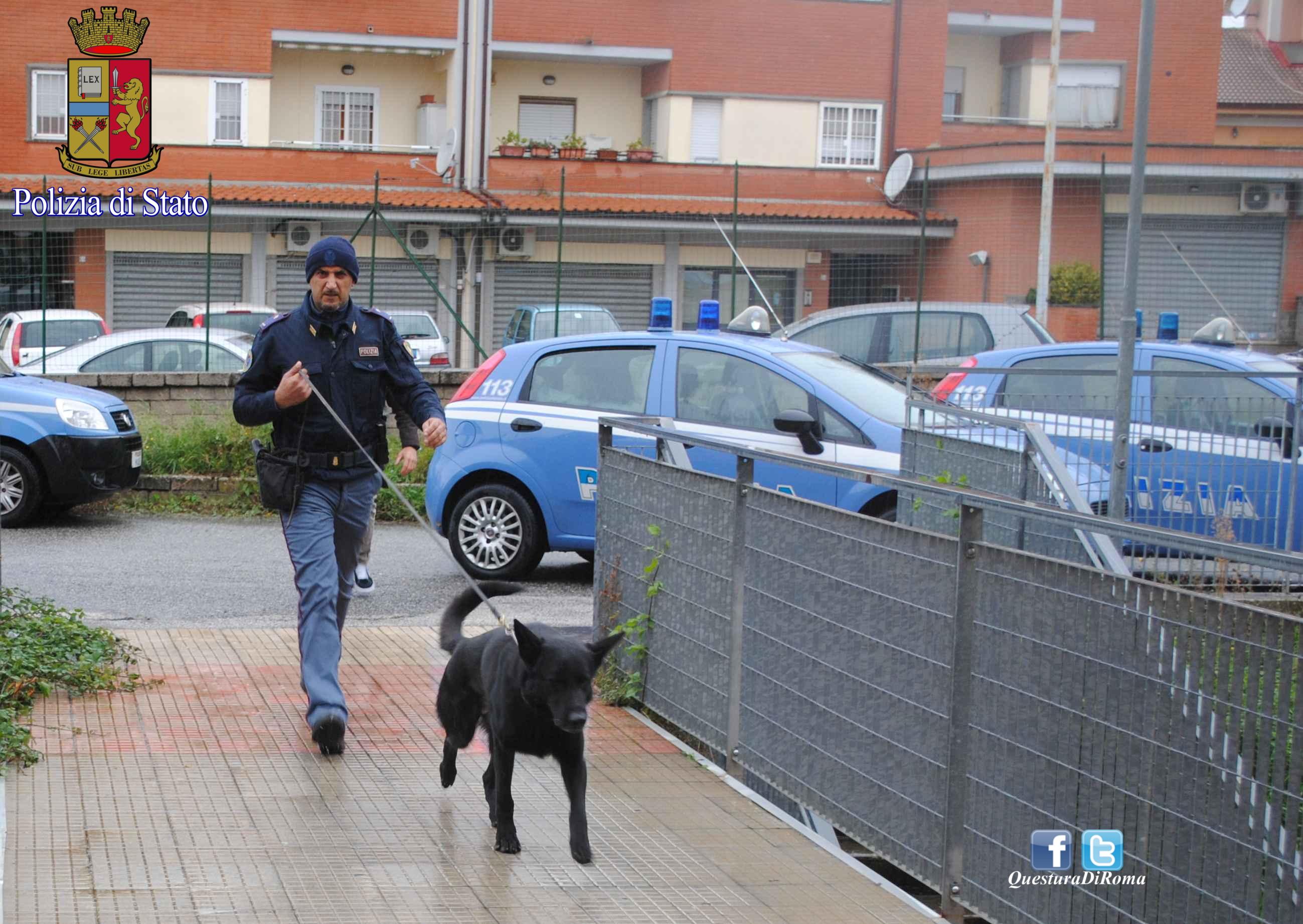 Colleferro, pusher preso dalla Polizia dopo la fuga: fondamentale l'aiuto dell'unità cinofila