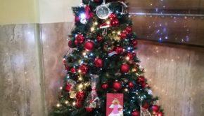 """Ciociaria, albero di Natale 2017 """"europeo"""" con le decorazioni dei bambini delle scuole primarie"""