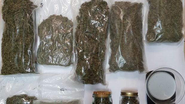 Arrestato 40enne sondriese coltivatore di marijuana