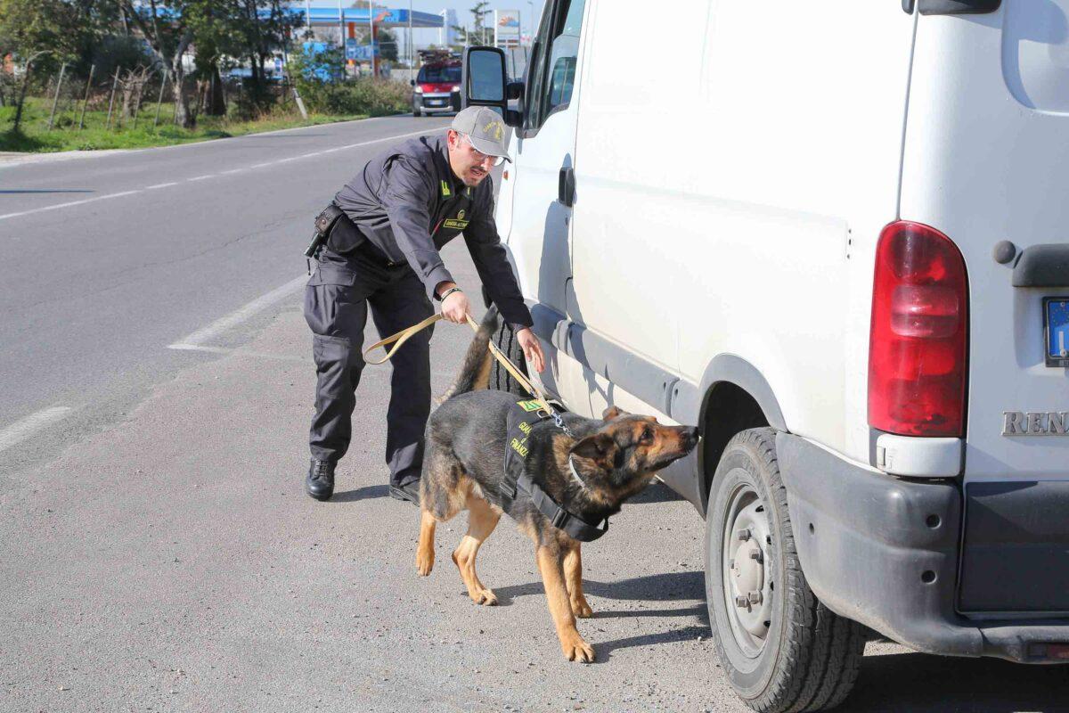 Ceprano, arrestato 28enne del luogo per spaccio di droga