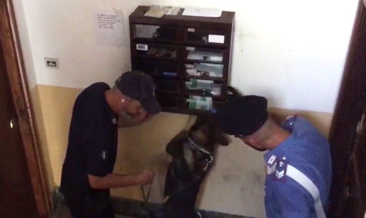iuggi, sorpresi a spacciare droga all'istituto alberghiero: segnalati due giovani studenti di Anagni