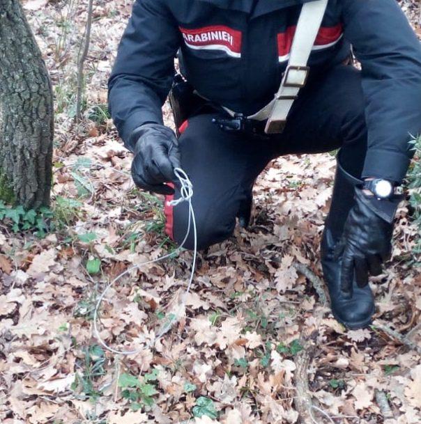 Bracciano, cacciava di frodo nella Riserva di Monterano. Inchiodato dai Carabinieri