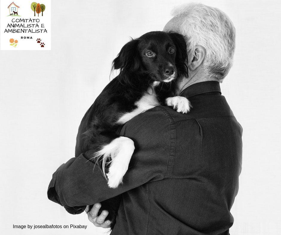 Comitato Animalista e Ambientalista Roma anziani animali