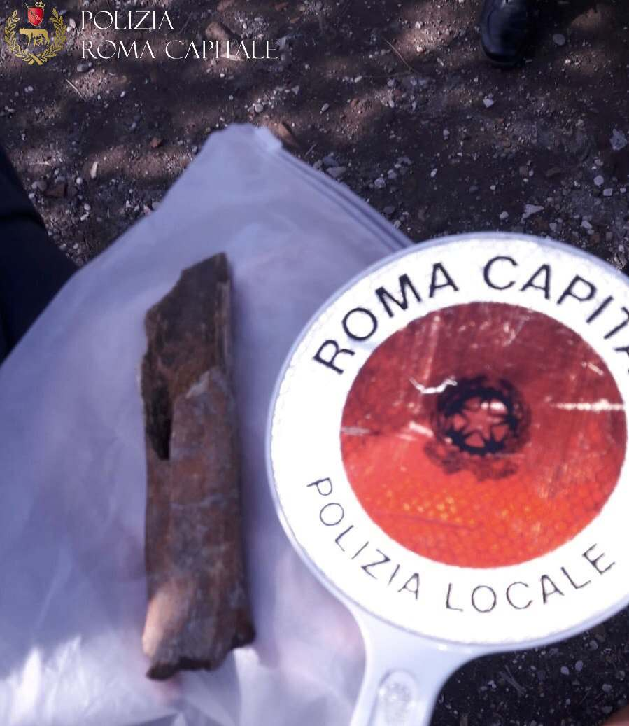 Colosseo, osso umano ritrovato da due turisti nel terreno vicino l'Anfiteatro Flavio: si indaga sul mistero