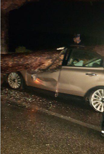 Colleferro-Artena, albero cade su una macchina: grave una donna