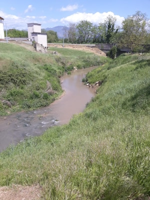 """Cassino, Quadrini: """"Inquinamento del Rio Pioppeto. Necessario accertare responsabilità"""""""