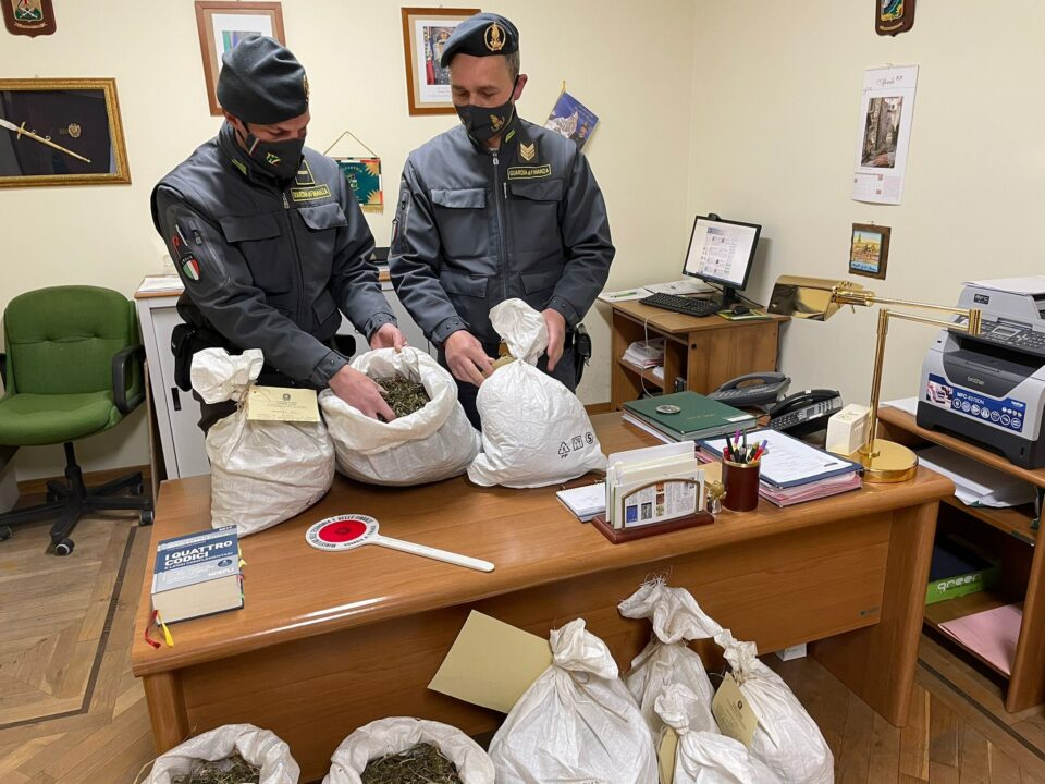 fiuggi sequestrati 188 kg marijuana