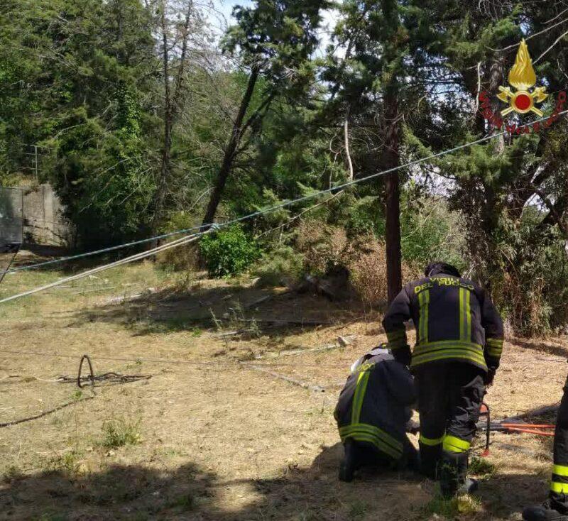 Roma. Rimane incastrato con un piede sotto al fusto di un albero appena tagliato: intervengono i VVF